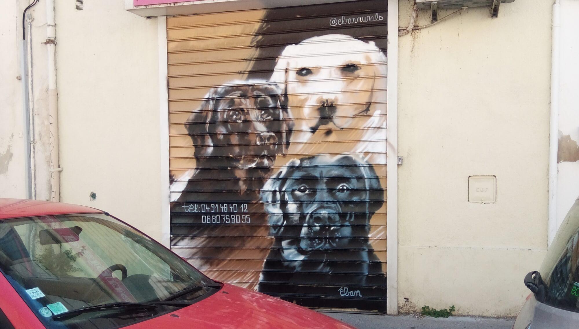 trois labrador, peinture sur rideau de fer de commerce, à Marseille